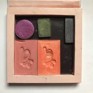 Magnetic Palette with blushes and eyeshadows